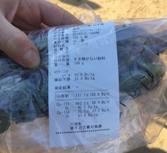 A bag of wild vegetables
